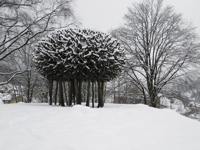 Vinter-jaakko2